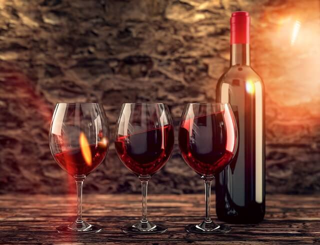 Investice do vína? část 1. – vinice nebo vinařství?